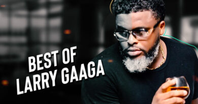 "DJ Gambit – ""Best Of Larry Gaaga Mix"""