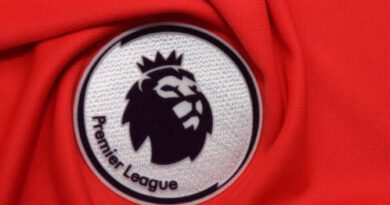 EPL matches to resume within weeks